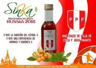 Sinka Mundial 04 Peru