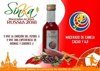 Sinka Mundial 09 Costa Rica